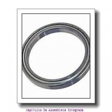 SKF 616674 Conjuntos de pressão do rolo e da gaiola da agulha