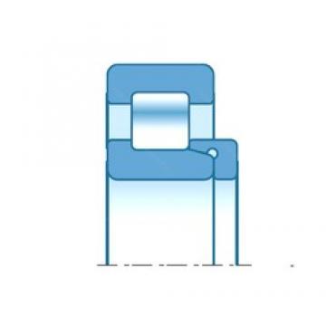 25,000 mm x 52,000 mm x 18,000 mm  NTN NH205 Rolamentos cilíndricos