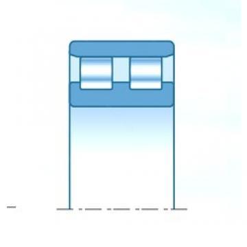 530 mm x 650 mm x 90 mm  NTN NN38/530C1NAP4 Rolamentos cilíndricos