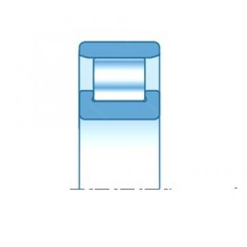 100,000 mm x 180,000 mm x 34,000 mm  NTN N220E Rolamentos cilíndricos